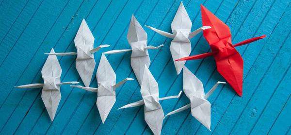 Do leadership programs set successful CEOs apart?